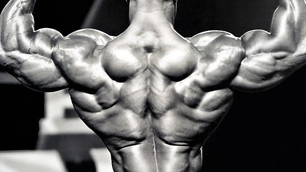 Building-a-Bodybuilder-Back