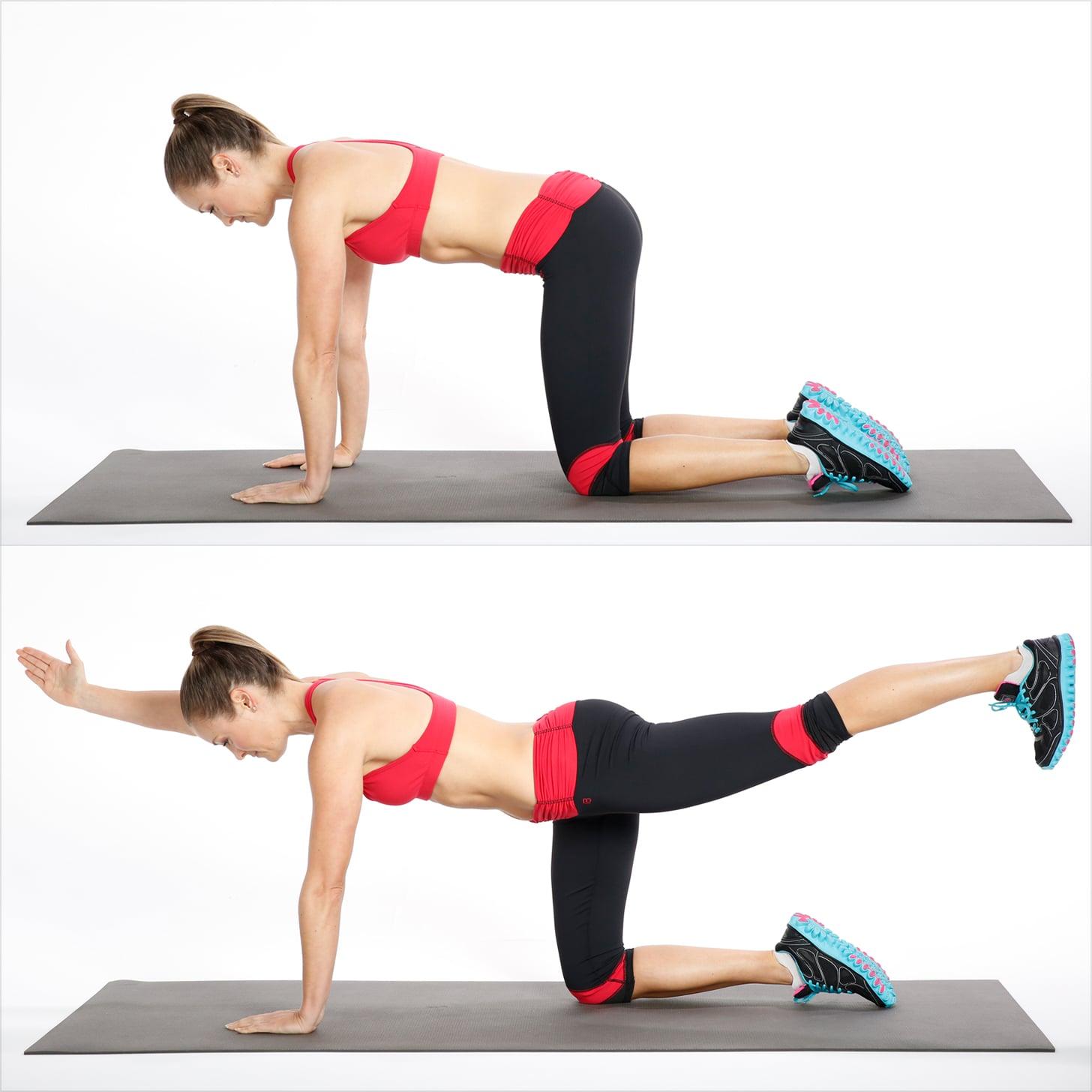 Birdog - Core exercises at home