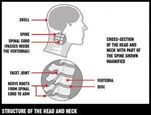 Neck Pain During Crunches At Home