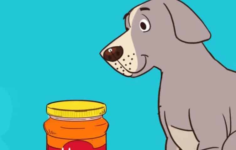 Tests To Check If Your Honey is Pure or Fake - Dogs Test