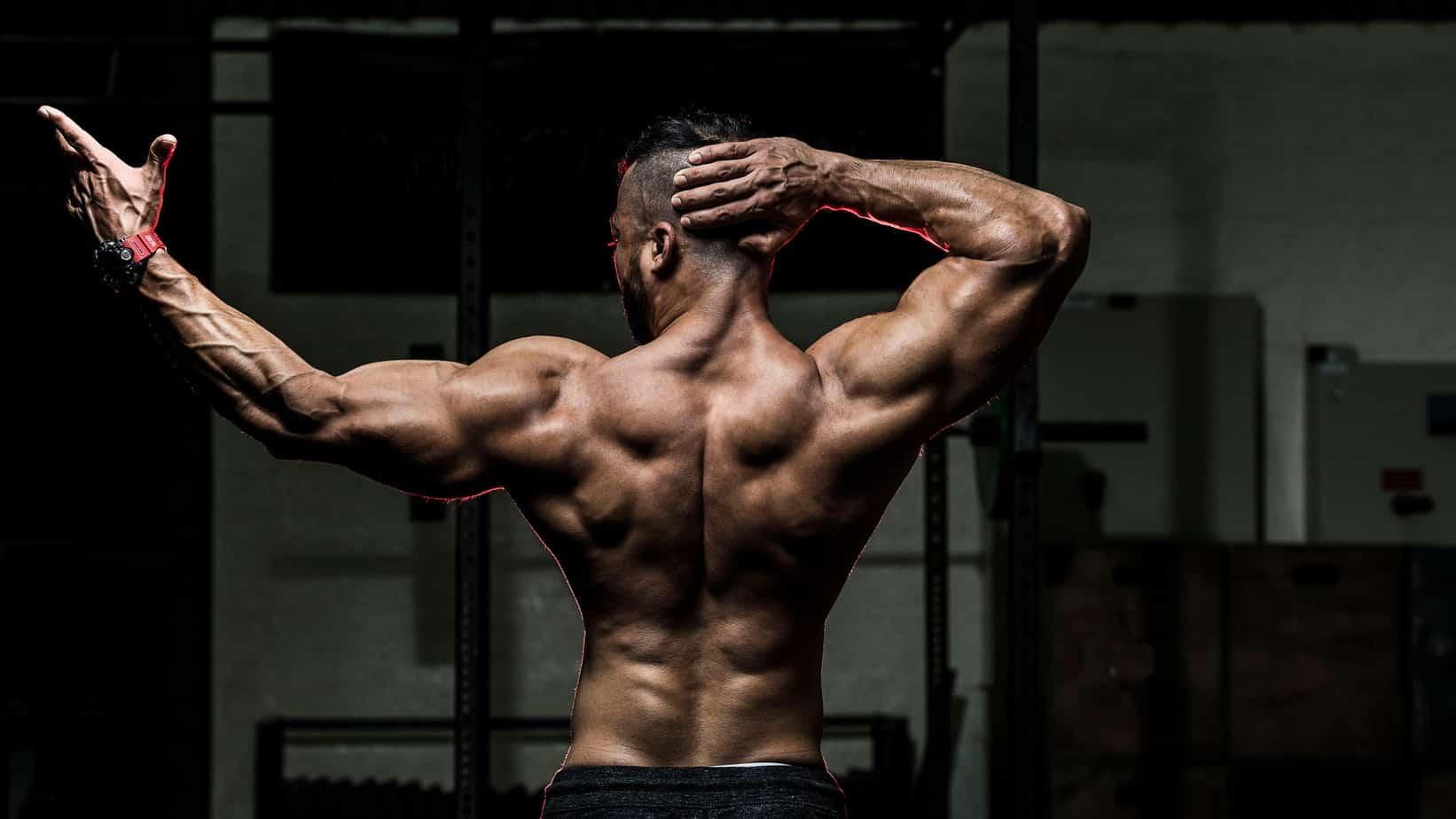 Body posture & Energy - Plank Benefits