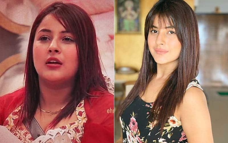 Shehnaaz Gill Transformation Photos